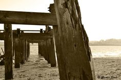 """""""fahan pier"""" by nualabarr Plants, Plant, Planets"""
