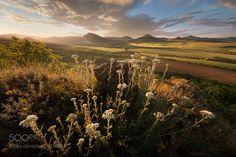 The end of spring (Daniel Řeřicha / Krupka / Czech republic) #Canon EOS5D mark II #landscape #photo #nature