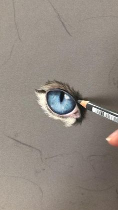 Pencil Drawings Of Animals, Cool Art Drawings, Realistic Drawings, Soft Pastel Art, Painting Fur, Colored Pencil Techniques, Color Pencil Art, Portrait Art, Cat Art