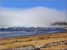 Burnett Bay, Queen Charlotte Strait  September 2004  Photo:Nathan Brigden