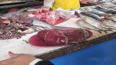 Chimbote: Incautan 6 kg carne de delfín en el mercado Miramar