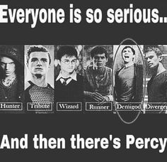 The Mortal Instruments, The Hunger Games, Harry Potter, The Maze Runner, Percy Jackson and Divergent