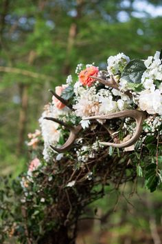 most perfect wedding arch Perfect Wedding, Our Wedding, Wedding Ideas, Shutter Photography, Beautiful Bride, Perfect Place, Arch, Floral Wreath, Southern