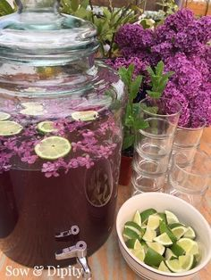 Lilac Cocktail Recipe-Lilac Infused Cocktail 1 oz White Rum 1 oz Blueberry or Raspberry Vodka 1 oz Lilac Cordial Club Soda Ice and Wedge of Lime Cocktail Drinks, Cocktail Recipes, Non Alcoholic Drinks, Beverages, Flower Food, Wild Edibles, Edible Flowers, Lilac Flowers, Purple Wedding
