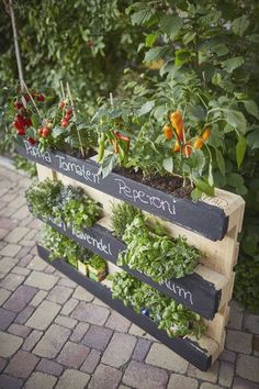 Upcycling – Hochbeet aus Paletten Upcycling – raised bed made of pallets Upcycling – raised bedDIY – raised beds made of paletA raised bed of pallets Herb Garden Pallet, Herb Garden Design, Pallets Garden, Vegetable Garden, Garden Boxes, Garden Planters, Garden Ideas, Balcony Gardening, Balcony Plants