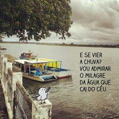 Tudo é um milagre :)