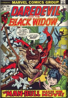 heroesofhellskitchen:  Daredevil and Black Widow Covers V1...