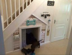Dachunds indoor dog house