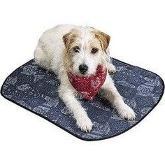 Doggie Cooling Mat, Cowboy Blue, Large Large           36L x 26W. Cools dog's belly and body on contact. When hydrated, the pad provides a cool, cushiony soft resting spot on floor, patio, or other shady place..  #Occunomix #PetProducts