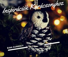 Karácsonyi dekorációk blog  |  Újra életrekelt
