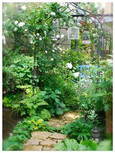 庭の雰囲気が一変