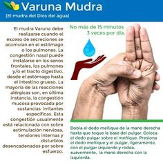 Chakra Meditation, Kundalini Yoga, Pranayama, Hand Mudras, Hand Reflexology, Hand Therapy, Yoga Nidra, Iyengar Yoga, Spiritual Path