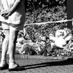 De goedaardige Nederlander. Maar voor Hoe lang?Moet het gevoelige zelf van de Nederlander beschermd worden?http://mauk.nu/het-gevoelige-zelf.html