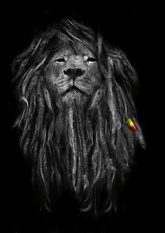 Rasta Lion good idea for a Leo tat                                                                                                                                                      Mais