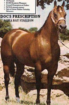 Doc's Prescription  Quarter Horse Legend