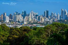 Parque Metropolitano: Home to the Best Views in Panama City