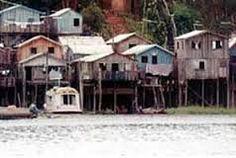 4 – Casas sobre palafitas no Amazonas, adequadas às necessidades de proteção das cheias do rio. (Fonte: Beatriz Santos Oliveira) Visitar página  Visualizar imagem