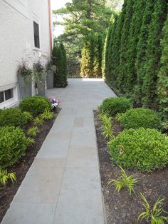 Side of house stone sidewalk.