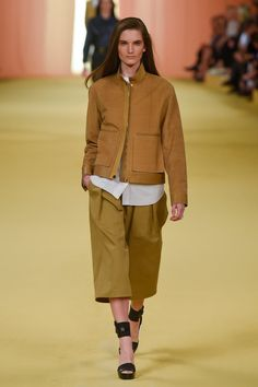 A look from the Hermès Spring 2015 RTW collection.