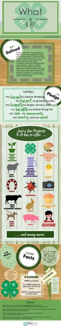 grow into illustration - Yahoo Search Results Fair Projects, Projects For Kids, 4 H Clover, 4 H Club, Ffa, Summer Fun, Summer Beach, Activities, Livestock