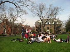 north park university, four-year, university, chicago, illinois, images