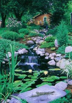 my fantasy stream, waterfall, and pond at my fantasy home in the mtns