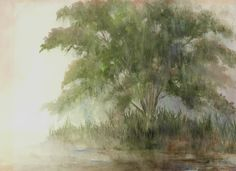 This is a watercolor of the first mimosa tree in my back yard.  A rainy day.  Now there must be a least 25 mimosas, I just love them.