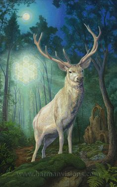white stag | The white stag in Celtic myth is a sign that the other world is near.