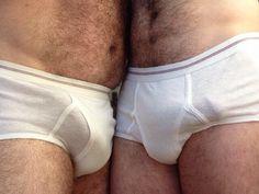 White Briefs Lover : Photo
