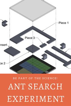 DIY: You can help scientists study ants. This website gives detailed instruction on participating in a citizen science project. Have fun! Citizen Science, Science Projects, Scientists, Ants, Study, The Unit, Activities, Website, School