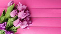 lovely tulip wallpaper