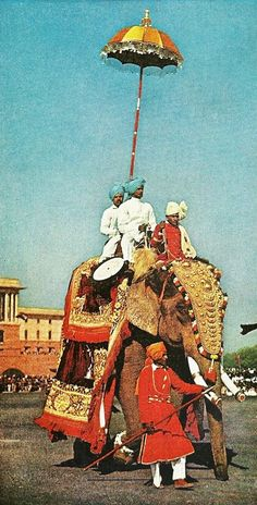 Elephant carries musicians under a Mahout during a parade in India    National Geographic | May 1963