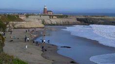 Temple: Santa Cruz Dog Beach