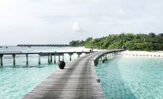 Maldives Travel Diary - #travelwithTJD