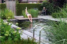 10x Vijver Inspiratie : Vijver inspiratie swimming pools natural
