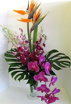 monstera deliciosa leaf, strelitzia, phalaenopsis, mokara - by Worcester florists - Sprout
