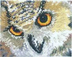 Картинки по запросу вышивка сова схемы