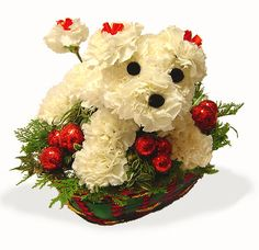 Puppy Bouquets Made with Flowers | Perritos en canasta 4. Mascotas florales.