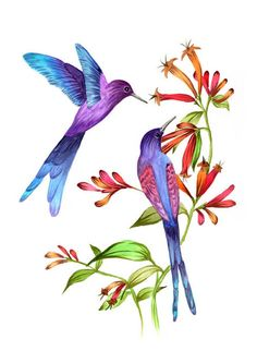 Hey, I found this really awesome Etsy listing at https://www.etsy.com/listing/160531362/hummingbirds-watercolor-painting-print