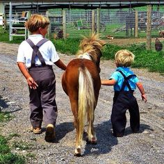 Two Amish boys and a little pony