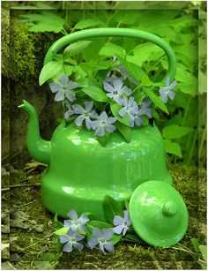 green tea kettle with flowers Go Green, Green Colors, Colours, Green Girl, Pretty Green, Bright Green, Ideias Diy, Yard Art, Shades Of Green