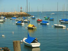 Sailboats in Rockport Harbor by beegardener #EasyNip