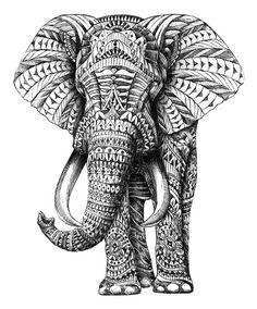 Ornate Elephant by Aura: Elephants, Elephant Art, Elephant Tattoo, Tattoos, Zentangle Doodles Zentangles, Zentangle Patterns, Elefante Hindu, Arte Tribal, Tribal Fox, Elephant Love, Indian Elephant, Elephant Canvas, Elephant Pattern