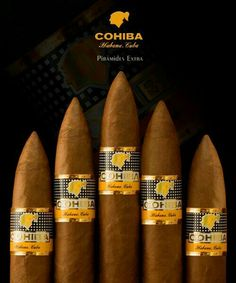 Cohiba Piramides Extra cigars