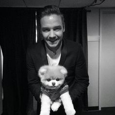 Boo's famous friends included singer Liam Payne Boo the Pomeranian dog, from San Francisco, passed away Friday due to heart problems he started experiencing shortly after his fellow canine friend Buddy died in Liam James, Liam Payne, Zayn Malik, Niall Horan, Boo And Buddy, World Cutest Dog, San Francisco, Niall And Harry, My Guy