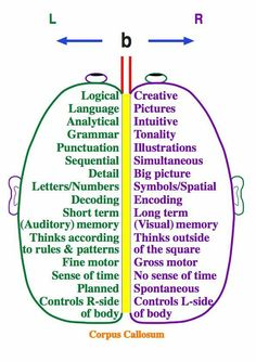 Right brain / Left brain - Click image to find more Education Pinterest pins