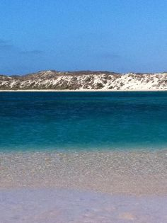 Coral bay Western Australia Western Australia, Westerns, To Go, Coral, Waves, Beach, Amazing, Outdoor, Outdoors