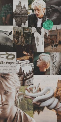 I don't own any of the pictures. Harry Potter Images, Harry Potter Draco Malfoy, Slytherin Harry Potter, Harry Potter Characters, Draco Malfoy Aesthetic, Slytherin Aesthetic, Animes Wallpapers, Cute Wallpapers, Hogwarts