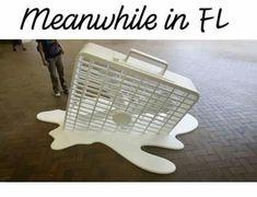 So damn hot! Florida Funny, Florida Humor, Weather Memes, Georgia On My Mind, Southern Belle, Energy Efficiency, Coastal Living, Solar Panels, Home Appliances