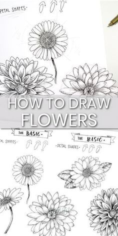 How to draw flowers in an easy step by step guided tutorial howtodrawflowers flowertutorial drawingflowers Flower Drawing Images, Easy Flower Drawings, Flower Drawing Tutorials, Floral Drawing, Flower Sketches, Easy Drawings, Art Tutorials, Art Sketches, Drawing Ideas